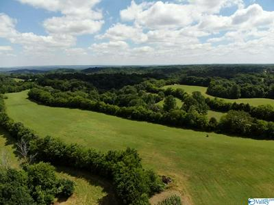 TRACT 3 RED HILL ROAD, TAFT, TN 38488 - Photo 2