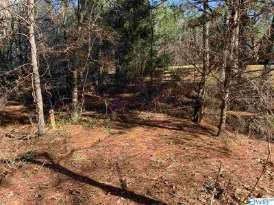 00 N GREENWAY DRIVE, TRINITY, AL 35673 - Photo 2