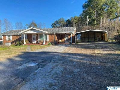 27940 HWY 253, Hackleburg, AL 35564 - Photo 1