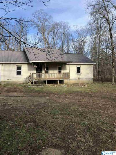 1857 COUNTY ROAD 642, Mentone, AL 35984 - Photo 2