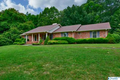 31529 PLEASANT VIEW DR, ARDMORE, TN 38449 - Photo 2