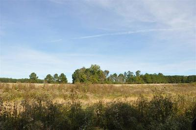 00 COUNTY ROAD 43, SECTION, AL 35771 - Photo 2