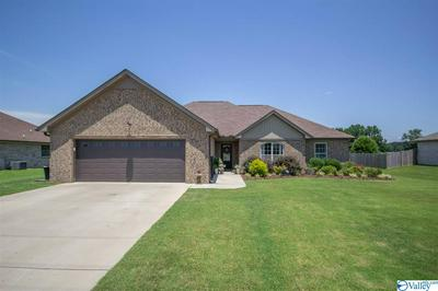 28311 FERGUSON LN, TONEY, AL 35773 - Photo 1