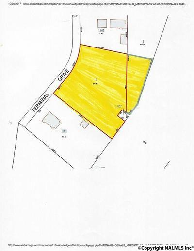 TERMINAL STREET, FORT PAYNE, AL 35968 - Photo 1