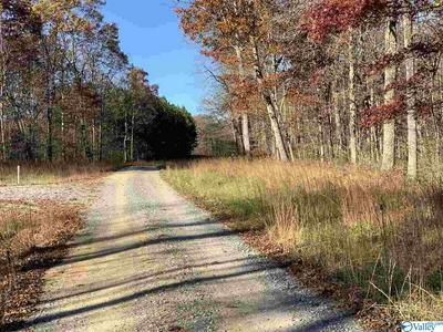 22 COUNTY ROAD 146, SCOTTSBORO, AL 35768 - Photo 1