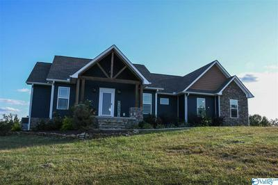 184 BURROUGHS LOOP, SCOTTSBORO, AL 35769 - Photo 1