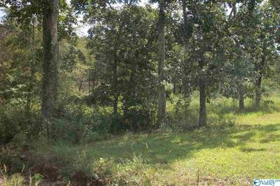 00 COUNTY ROAD 166, LEESBURG, AL 35983 - Photo 2