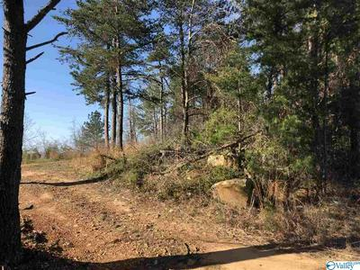 LOT 1 COUNTY ROAD 70, LEESBURG, AL 35960 - Photo 2