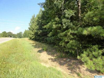 COUNTY ROAD 418, DUTTON, AL 35744 - Photo 1