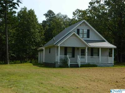 1218 COUNTY ROAD 732, HENAGAR, AL 35978 - Photo 2