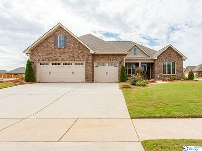 124 COVE BROOK DR, MERIDIANVILLE, AL 35759 - Photo 1