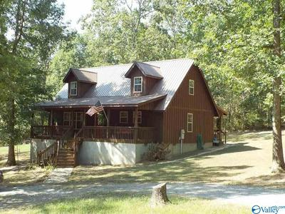 646B COUNTY ROAD 639, Mentone, AL 35984 - Photo 2