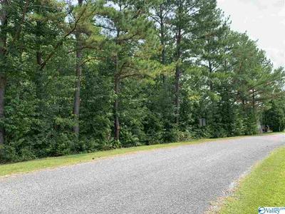 0 ODONNELL ROAD, ASHVILLE, AL 35953 - Photo 1