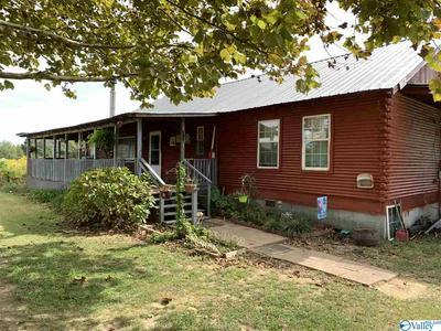 910 COUNTY ROAD 29, CROSSVILLE, AL 35962 - Photo 2