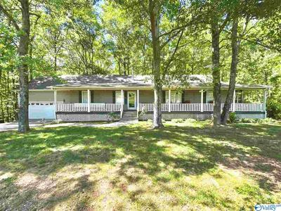 1137 COUNTY ROAD 1763, JOPPA, AL 35087 - Photo 1