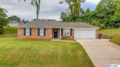 147 CARNEGIE LOOP, MERIDIANVILLE, AL 35759 - Photo 1