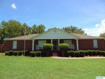 810 OLD HIGHWAY 31 S, HANCEVILLE, AL 35077 - Photo 1