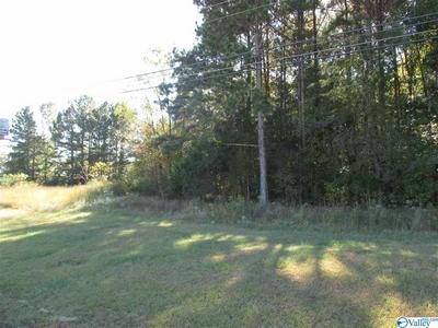 6020 HIGHWAY 431 S, BROWNSBORO, AL 35741 - Photo 1