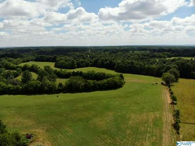 TRACT 4 RED HILL ROAD, TAFT, TN 38488 - Photo 2
