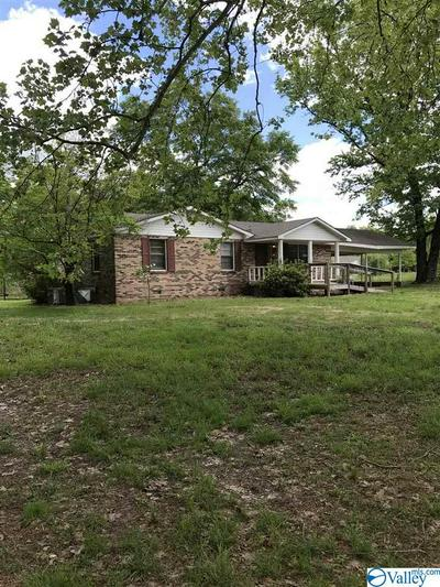 4264 COUNTY ROAD 217, TRINITY, AL 35673 - Photo 1