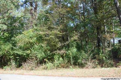 00 COUNTY ROAD 48, SECTION, AL 35771 - Photo 2