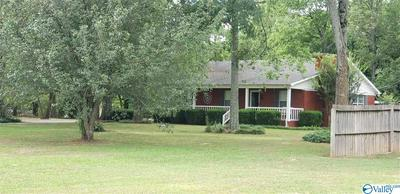 8555 HIGHWAY 36, DANVILLE, AL 35619 - Photo 1