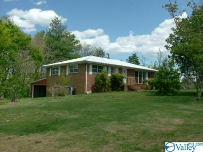 236 COUNTY ROAD 770, IDER, AL 35981 - Photo 2