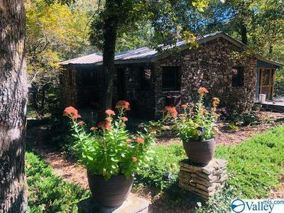 324 COUNTY ROAD 635, MENTONE, AL 35984 - Photo 1