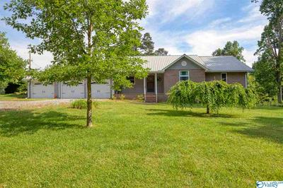 7065 WILLOW RD, IDER, AL 35981 - Photo 1