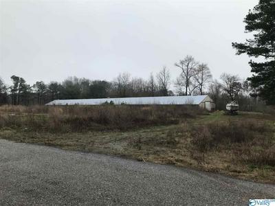 860 COUNTY ROAD 1240, VINEMONT, AL 35179 - Photo 2