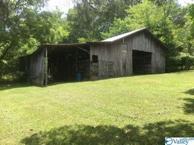 403 COUNTY ROAD 147, STEVENSON, AL 35772 - Photo 2
