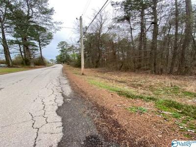 0 ROAN ROAD, Hartselle, AL 35640 - Photo 2