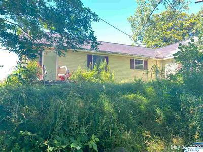 240 COUNTY ROAD 1215, VINEMONT, AL 35179 - Photo 2