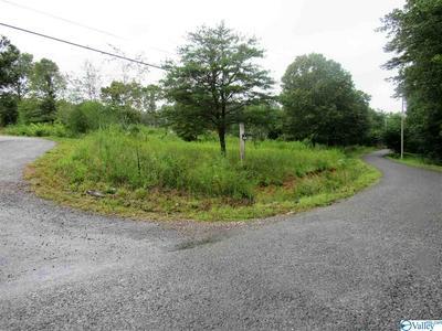 920 COUNTY ROAD 130, FORT PAYNE, AL 35967 - Photo 1