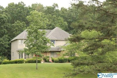 2302 PACK RD NW, FORT PAYNE, AL 35968 - Photo 1
