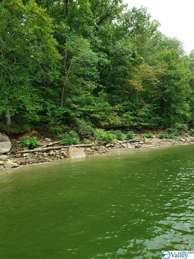 0 ROCK CREEK PENNINSULA # LOT 23, Arley, AL 35541 - Photo 2