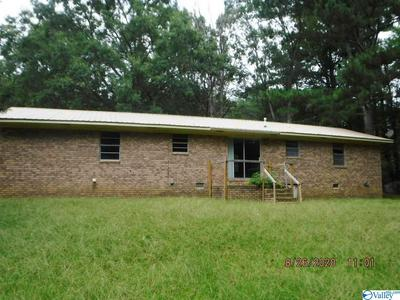 13808 AL HIGHWAY 117, HENAGAR, AL 35978 - Photo 2