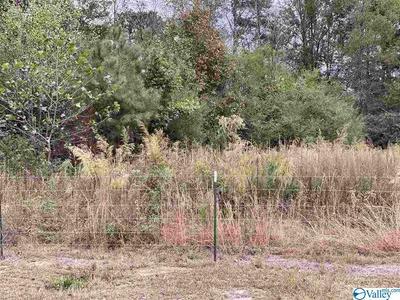 1 COUNTY ROAD 123, DUTTON, AL 35744 - Photo 2