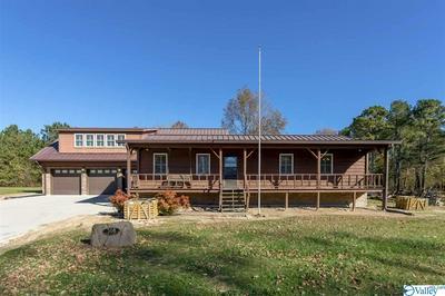 308 FOSTER LANDING RD, GUNTERSVILLE, AL 35976 - Photo 2