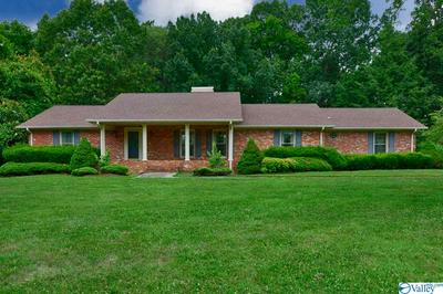 31529 PLEASANT VIEW DR, ARDMORE, TN 38449 - Photo 1