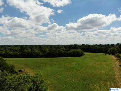 TRACT 4 RED HILL ROAD, TAFT, TN 38488 - Photo 1