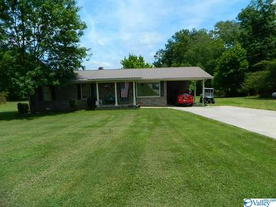 850 COUNTY ROAD 47, DUTTON, AL 35744 - Photo 1