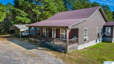 726 COUNTY ROAD 249, FORT PAYNE, AL 35967 - Photo 2
