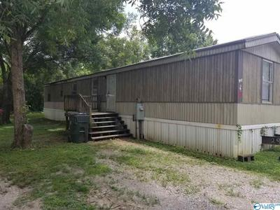 6204 HIGHWAY 53, TONEY, AL 35749 - Photo 2