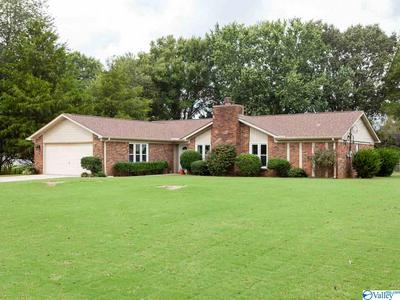 217 COLLINS LN, MERIDIANVILLE, AL 35759 - Photo 2