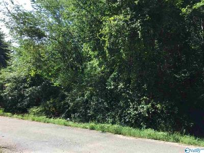 0000 BEAVER RUN DRIVE, TONEY, AL 35773 - Photo 1