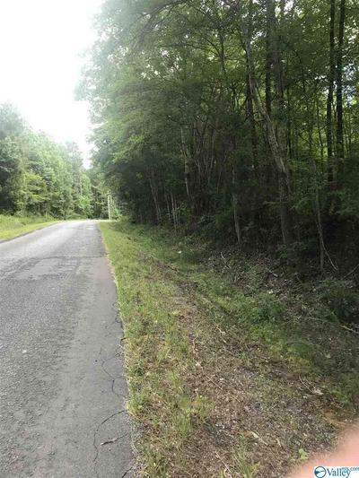 000 COUNTY ROAD 107, SCOTTSBORO, AL 35768 - Photo 2