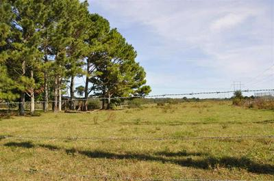 00 COUNTY ROAD 43, SECTION, AL 35771 - Photo 1