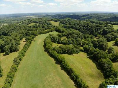 TRACT 2 RED HILL ROAD, TAFT, TN 38488 - Photo 1
