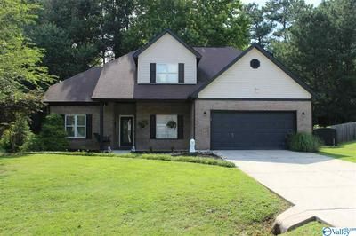 140 DEER CREEK TRL, TONEY, AL 35773 - Photo 1